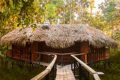Sacha Lodge - Amazon Ecuador
