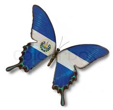 El Salvador flag on butterfly | Stock Photo | Colourbox