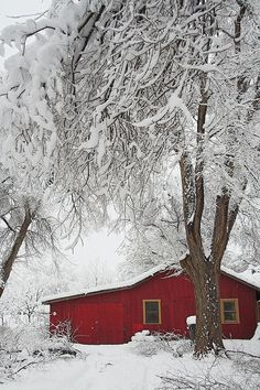snow covered barn by Mike Pedroncelli, via Flickr