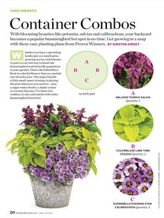 Container gardening is a fun way to add to the visual attraction of your home. You can use the terrific suggestions given here to start improving your garden or begin a new one today. Your garden is certain to bring you great satisfac Garden Yard Ideas, Garden Planters, Lawn And Garden, Planters For Front Porch, Full Sun Planters, Fish Garden, Box Garden, Outdoor Plants, Outdoor Gardens