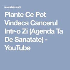 Plante Ce Pot Vindeca Cancerul Intr-o Zi (Agenda Ta De Sanatate) - YouTube Cancer, Youtube, Cholesterol, Youtubers, Youtube Movies