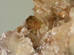 Almarudite, K(□,Na)2(Mn2+,Fe2+,Mg)2(Be,Al)3[Si12O30], Caspar quarry, Bellerberg volcano, Ettringen, Mayen, Eifel, Rhineland-Palatinate, Germany. Fov 2 mm. Copyright © Stephan Wolfsried 3/2007