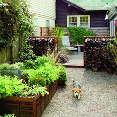 I really like the gentle, open-ish fencing between the seating patio and the raised beds. And is that firewood?