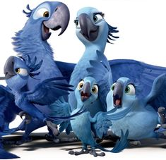 Rio 2 Official Trailer from Blue Sky Cute Disney Wallpaper, Cartoon Wallpaper, Movie Wallpapers, Cute Wallpapers, Blue Sky Movie, Disney Vintage, Rio Movie, Rio Photos, Blue Sky Studios