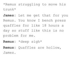 """""""Quaffles are hollow James"""" I can practically see the look on Remus's face as he says this"""