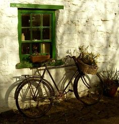 Things I love, old windows, bikes, baskets, flowers and Glenou, Ireland.