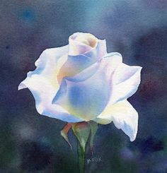 """""""WORLD OF LIGHT floral rose watercolor painting"""" - Original Fine Art for Sale - © Barbara Fox"""