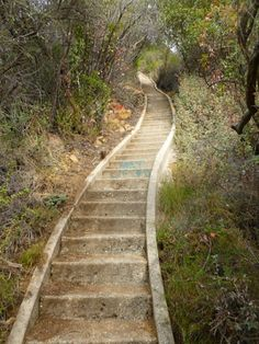 THE giant steps - 512 - reportedly the longest set of stairs in Los Angeles