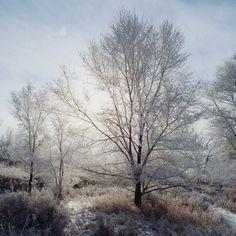 wistfullycountry:  Brandon Eckroth