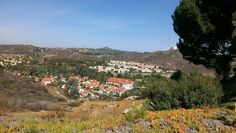 Rancho  san diego homes. I took this picture  while passing out fliers with my carpet cleaning special