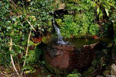 A well in Brockweir in the Wye Valley, Forest of Dean, Gloucestershire England. ...Wow that's a mouthful!