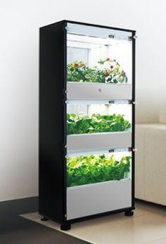 家庭で水耕栽培ができる「Green Farm」に新モデル