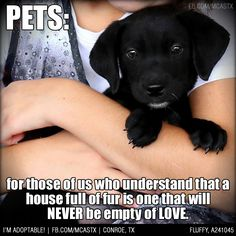 Exactly! #foreverlove #mcaspets