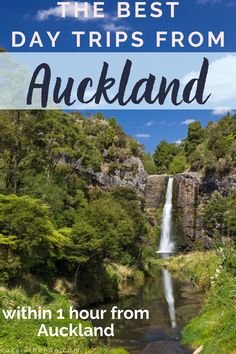 There are many great day trips from Auckland, all offering a lot of variety for those of us who work in the city and are in need of a break, or are after some unique things to do in Auckland. From coastal day trips to countryside hikes and fascinating attractions, Auckland has a lot of amazing sights just a stone's throw away. Find out where to plan your next day out from Auckland here! #auckland #newzealand #daytrip #travel #thingstodo New Zealand Jobs, New Zealand Travel, China Travel Guide, Working Holiday Visa, Waiheke Island, Top Travel Destinations, Worldwide Travel, Auckland, Australia Travel