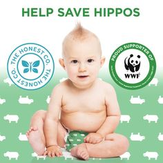 Safeguard and Celebrate the Planet with Honest & World Wildlife Fund