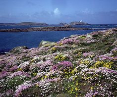 isles of scilly - Google Search