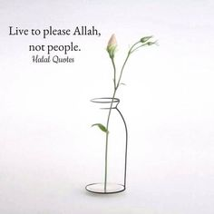 Live to please Allah.