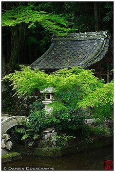 Spring leaves hiding a small sanctuary in Hitokoto temple Kyoto, Japan 日本 by Damien Douxchamps Japanese Landscape, Japanese Architecture, Japanese Gardens, Japan Garden, Garden Park, Japanese Temple, Art Asiatique, Japanese Aesthetic, Parcs