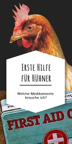 Welche Medikamente und Utensilien gehören in die Hühner-Apotheke? Eine Liste für die Erste-Hilfe-Grundausstattung.