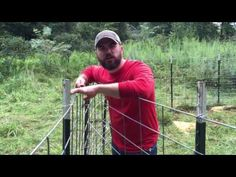 Round Hog Trap Building Plans Traps Pinterest Hog
