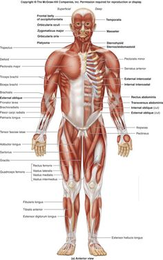 Physiotherapy clinic in Kolkata - Dr. hironmoy sil's clinic is one of the best physiotherapy clinic in KolKata. We provide treatment of all kind of physical diseases like cardiopulmonary, orthopaedic, paediatric, neurology, heart ailments. Please visit: http://www.hironmoysil.com/aboutp/