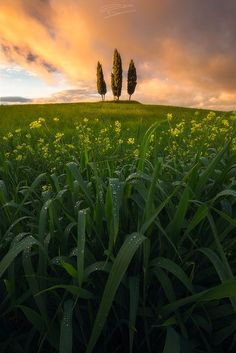 Tre by Daniele Penno on 500px
