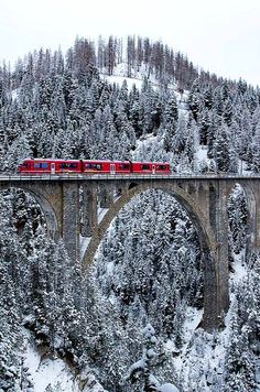 ABe 8/12 with a push–pull train crosses the Wiesen Viaduct between Wiesen and Filisur, Switzerland | by Georg Trüb