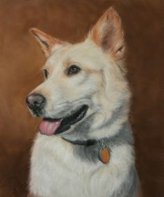 Daisy - Rescue  Pastel on Velour Paper By Patty Pendergast