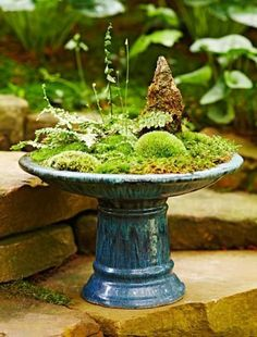 Can you make a moss dish garden? Sure you can! Follow our step-by-step instructions: http://www.midwestliving.com/garden/container/how-to-make-a-moss-dish-garden/