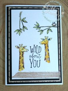 Wild About You. Use
