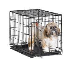 MidWest iCrate Folding Metal Dog Crate >>> Wow! I love this. Check it out now! : Dog cages