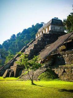 Es el Palenque en Chiapas, Mexico. Son unas pirámides