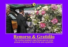 REMORSO & GRATIDÃO
