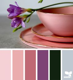 Color Maker ~ design seeds