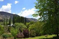 Titanic View - Clarens Accommodation. Small Lounge, Lounge Areas, Small Fridges, Queen Room, Toilet Room, Free State, Fish Ponds, Maine House, Mountain View