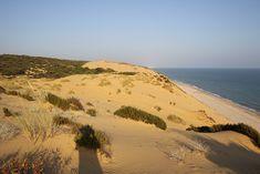Celestial, Sunset, Beach, Water, Outdoor, Dune, Scenery, Water Water, Outdoors