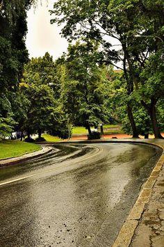 Дощовий #Львів