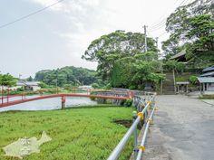 境内の前に大きな池が。赤いタイコ橋風の橋の向こうには小さなお堂があります。