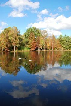 Sweet Water Lake Alabam 102