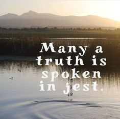 Many a truth is spoken in jest. Thoughts, Beach, Water, Quotes, Outdoor, Gripe Water, Quotations, Outdoors, The Beach