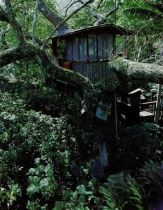 Bohemian Pages: These are not our Childhood Tree Houses...