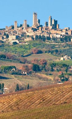 San Gimignano-city completely within its fortification walls...LOVED this city!
