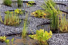 Výsledok vyhľadávania obrázkov pre dopyt okrasné záhrady pred domom