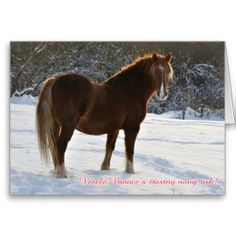 ==>Discount          Czech, Horse in the snow christmas card           Czech, Horse in the snow christmas card in each seller & make purchase online for cheap. Choose the best price and best promotion as you thing Secure Checkout you can trust Buy bestDiscount Deals          Czech, Horse in...Cleck Hot Deals >>> http://www.zazzle.com/czech_horse_in_the_snow_christmas_card-137836398218250806?rf=238627982471231924&zbar=1&tc=terrest