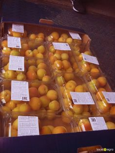 Local Agro Classifieds APRICOTES from Tunisia (500g container) - FRUITS - MOSCOW - FREE INTERNATIONAL CLASSIFIEDS