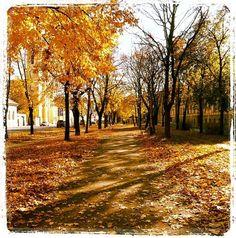 Kosice, Moyzesova Street