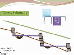 Terrace Schematic for homegrown small scale intensive spaces