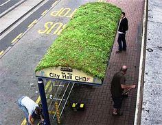 This bus stop with a green grass roof is in Sheffield, South Yorkshire, England. Ville Durable, Bus Stop Design, Green Roof System, Bus Shelters, Living Roofs, Living Walls, South Yorkshire, Yorkshire England, Green Architecture