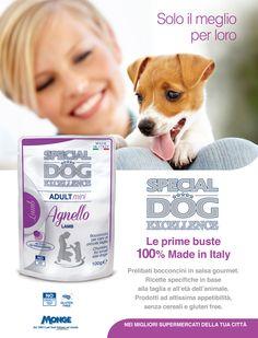 Special Dog Excellence - Solo il meglio per loro