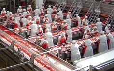 Calano le esportazioni delle aziende salernitane mentre aumentano le importazioni. Il dato, relativo agli anni 2013 e 2014, è stato reso noto dall'Ice